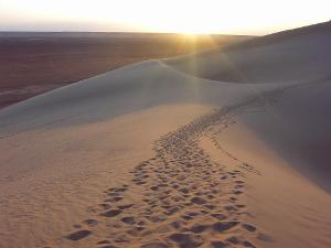 Path in Desert